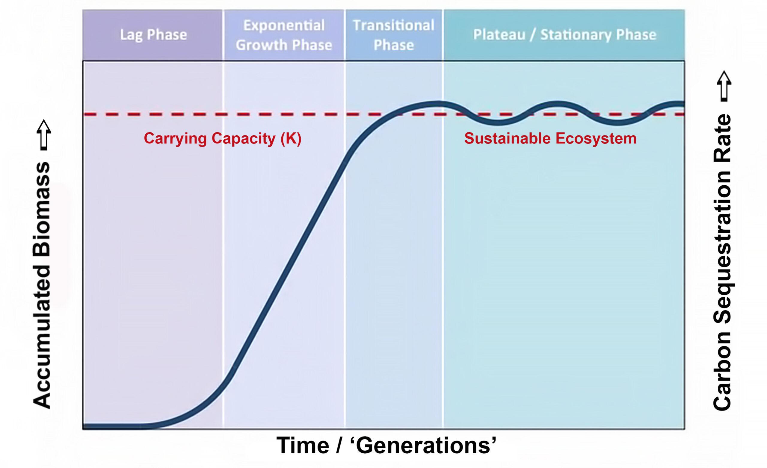 Source: modified from Bioninja  https://ib.bioninja.com.au/options/option-c-ecology-and-conser